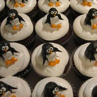 Img_0179.jpg Cupcakes with penguins on top. I used 7 minute frosting for the snow, and buttercream for the penguins.