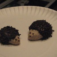 Hedgehogs Neighbor gave me pic and recipe from Country Woman magazine.Super easy to make and taste like pecan sandies.