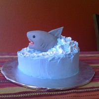 Shark In The Ocean Requested by my 5 year old after his dad let him watch part of Jaws. Cookies n Cream cake iced with Pastry Pride. Shark is RKT covered in...