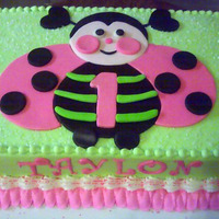 Ladybug Cake Ladybug cake for a 1 yr old. Made to resemble plate. I was pleased with it. WASC, Indydebi's icing and fondant accents.