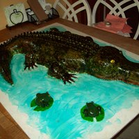 Alligator And Frogs  Carved alligator and frogs for an event at school. This cake will feed about 120 people. Gator carved from 11x15 and 8x8 square cakes, and...