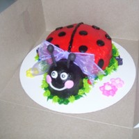 Lady Bug Cake All buttercream