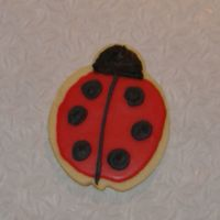 Ladybug Cookie This is yet another practice cookie. Cookie icing with royal details.