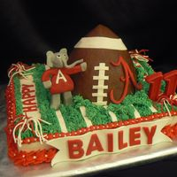 Bailey's Alabama Cake Made this for a friend's son's 11th birthday. Field is 9 X 13 WASC with Wilton recipe strawberry filling. It was good, but I...
