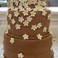 Cascading Flowers I used a new chocolate buttercream recipe on this cake and it just wasn't as stable. The silly flowers kept falling off. In...