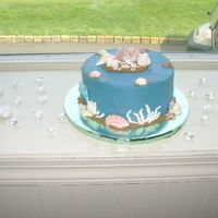 Grooms Beach Cake choco with chocolate filling,beach grooms cake with white choc shells painted with dust