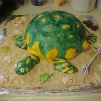 Turtle Cake This was for an 8 yr. olds birthday. She loves turtles and has 2 of her own. This was my first animal cake.I used an 8 inch round and a...