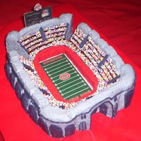 Ohio State University Stadium Cake I made this cake for my brother's 17th birthday. I used the new stadium pan from Nordicware, and then carved the cake to make the...