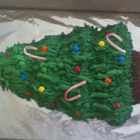 Christmas Tree   I made this for a friend of mine I used the Wilton Tree Pan, all bc , except candy decorations