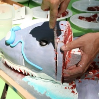 Swim Team Shark Cake
