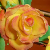 Cakes_014~1.jpg I took a project class this weekend to learn how to make gumpaste roses. I fell in love with it. I cant wait to learn more gumpaste flowers...
