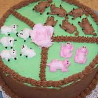 My Final Cake For Class 1 I went a little non-traditional with my final cake. I chose to work on my figure piping and made this little farm- not exactly what I...