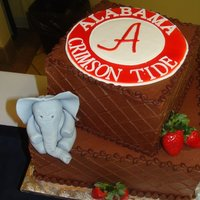 Stephen  This was the groom's cake for my sister's wedding. Her hubby is a huge Alabama fan! The logo was done using the cricut machine...
