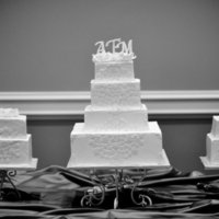 Modern Trio  This bride wanted something more modern and contemporary. It was really fun designing this cake. I don't have a very good shot of the...