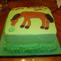 Horse  I was a little nervous about doing this cake, but I love a challenge. Drawing is not one of my talents so I traced the outline of a picture...