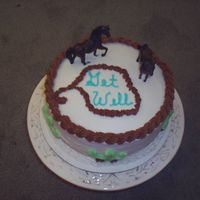Get Well Western Cake