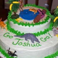 Go, Diego, Go Themed Birthday Cake