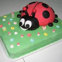 "Coccinella - Ladybug  My son's Enzo Mario first birthday. Yellow sponge cake (""Pan di spagna"") filled with a mix of pastry cream and whipped cream..."