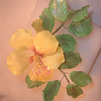 Yellow Hibiscus Gumpaste Flower This is a yellow Hibiscus flower and leaves made by me.