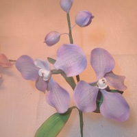 Gumpaste Vanda Orchid This is a gumpaste vanda Orchid made by me. Looks real don't it.