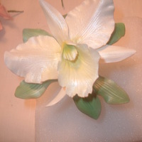 White Cattleya Orchid White Cattleya Orchid made by me.