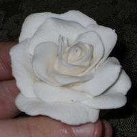 White Rose Gumpaste Please let me know what I can impove on. It is about my 6th try at roses