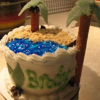 "Luau Birthday Cake 4.5 inch, 2 layer ""yellow"" cake for 1st birthday luau party. BC icing with piping gel ocean and animal cracker sandy beach. Used..."