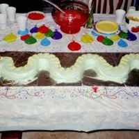 Snake Cake This snake was over 4 feet long!! It was cut out of three 8 inch rounds!
