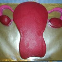 Uterus This Uterus was made for a Nursing student class! It is red velvet cake inside too!