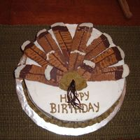 Turkey Fan I made this birthday cake for my boyfriend's 12-year-old son who hadjust had a successful 1st youth day hunt. Feathers were...