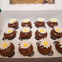 Daisy Cupcakes Chocolate Mousse cupcakes with gum paste daisies
