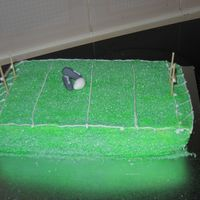 Footy Cake I made this for my 4 yo son, easy, grass was made of sugar