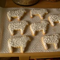 Sheep Cookies... That was a great idea to NOT show the bumpy icing...