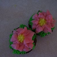 Mini-Cupcake Flowers These were just for practice. Thanks to everyone on CC for the inspiration.