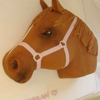 Jordan's Horse Yet another horse cake. Sponge and sugarpaste. Picture taken at an angle to show front of the head.