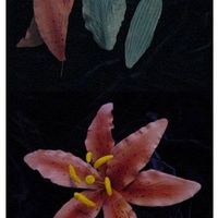 Stargazer_Lily_Mold2.jpg Star Gazer lily made using a mold I made from a Silk lily petal and silicon mold compound. I pressed the gumpaste into the mold and trimmed...