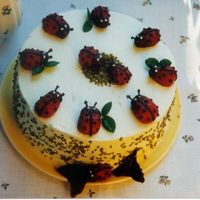 Strawberries_Ladybug_Cake.jpg