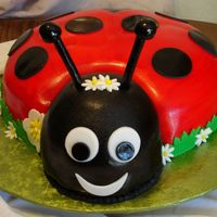 Lady Bug Lady Bug Fly Away Free Lady Bug Fondant Cake