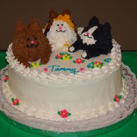 Cat Cake Center Birthday cake for cat lover