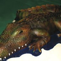 Alligator This was a grooms cake that I made at my PT job....found out about it 3 days before they needed it!! I carved the alligator from sheet...