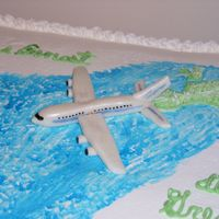 Mmf Airplane   I did not make this cake, my mom did. But I did make the airplane. Made from MMF.