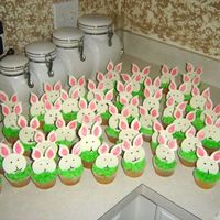 Funny Bunny This is my first batch of cupcakes. The bunnies are made of MMF and the grass is buttercream icing. I learned that I would have better...
