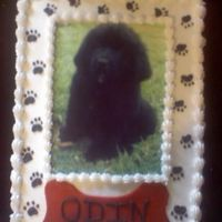 "Welcoming Home Cake My friend recently got a new puppy and they were having a ""Welcoming Home Party"" for him."