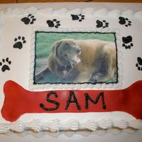 Man's Best Friend I loved this cake! It was for my Brother In Laws birthday and is a picture of his dog that he loves to death. I guess I should have wrote...