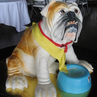 Bulldog 3D  The main body of this life-size bulldog groom's cake was built upon a wood frame from round layers of cake, with styrofoam for the...