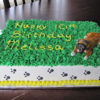 Boxer Cake This cake is decorate in BC with a Boxer dog made from MMF