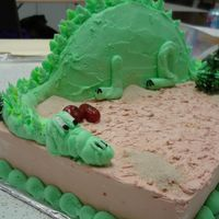 Dinosaur I made this at a cake decorating class i was taking.