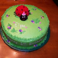 Lady Bug Here is my version of a lady bug cake. Thanks everyone for all of the postings you have done! My Royal Icing for the name was too thin (...