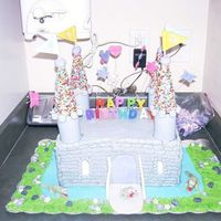 Castle Bday Cake Wanted a castle cake for twin girls.. This is what we came up with.. Pic is a little hard to see..
