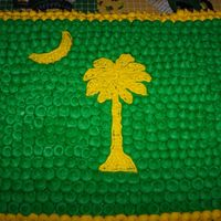 South Carolina Flag  SC State Flag done in Green and Yellow for someone who loves John Deere. The cake was not supposed to be covered in dots, but the icing...